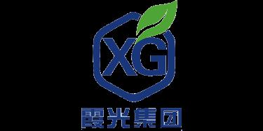 山东霞光集团有限公司