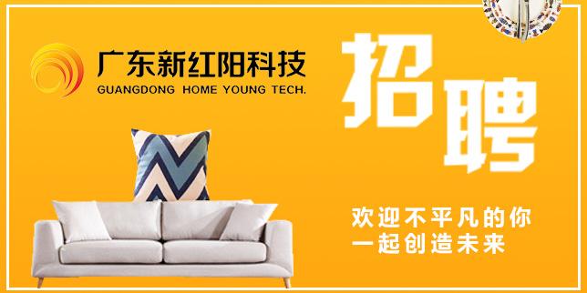 广东新红阳科技